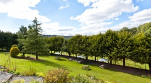The Craig Manor garden